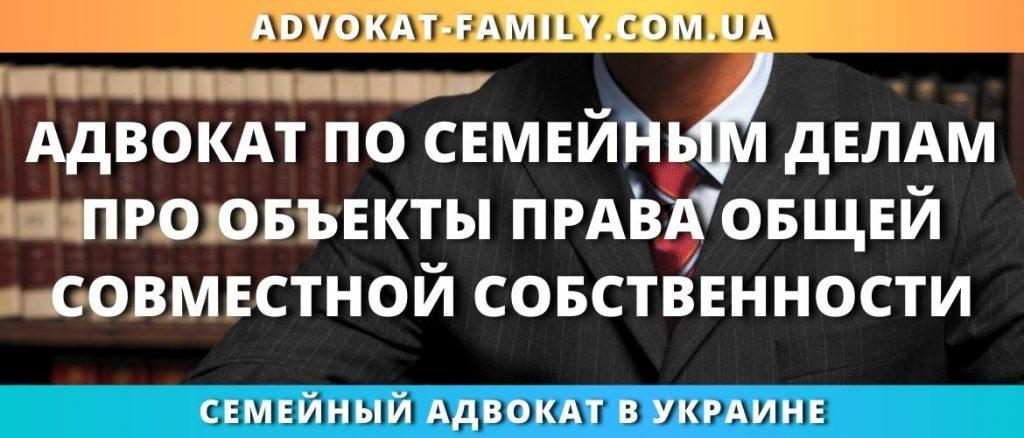 Адвокат по семейным делам про объекты права общей совместной собственности