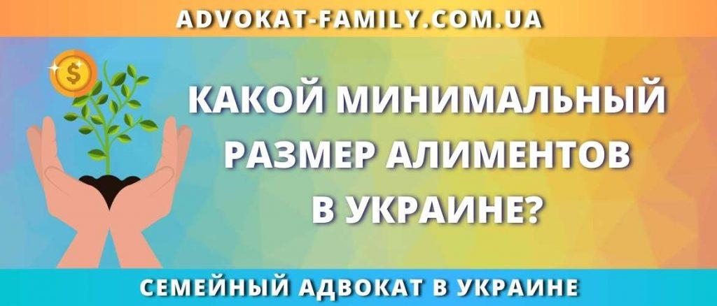 Какой минимальный размер алиментов в Украине?