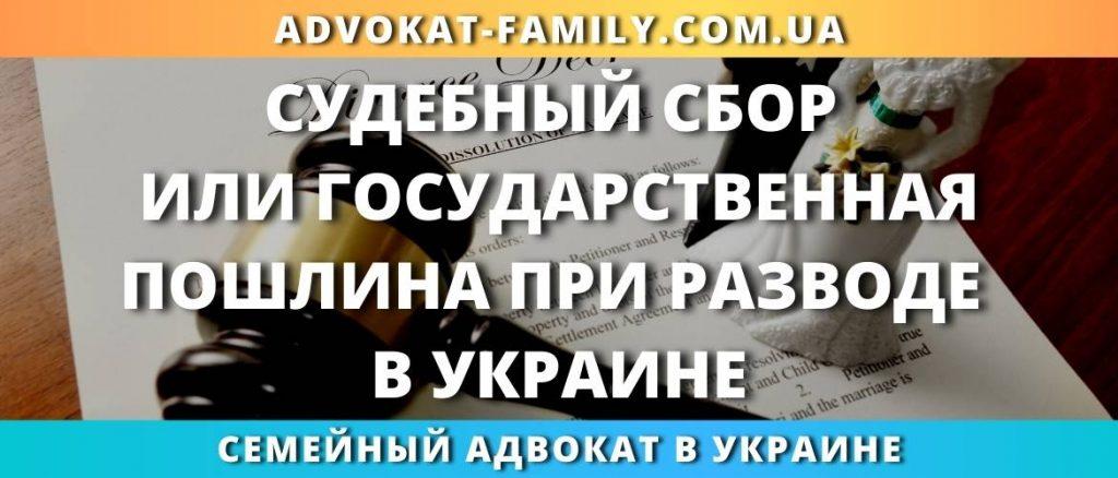 Судебный сбор или государственная пошлина при разводе в Украине
